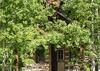 Entry - Shooting Star Cabin 02 - Teton Village - Luxury Villa Rental