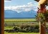 Elk Refuge House -  Jackson Hole, WY - Luxury Vacation Rental