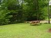 picnic_table_and_yard.jpg