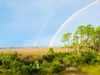 Another Boring Rainbow