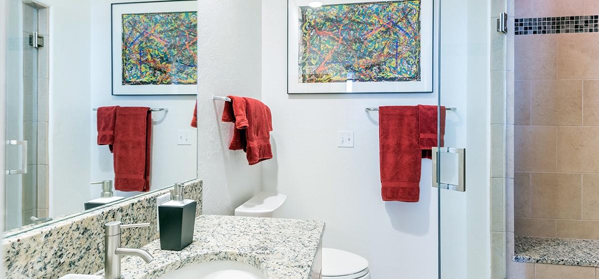 Copy of 14-Telluride-SanJuanPenthouseWest-GuestBathroom-V12.jpg