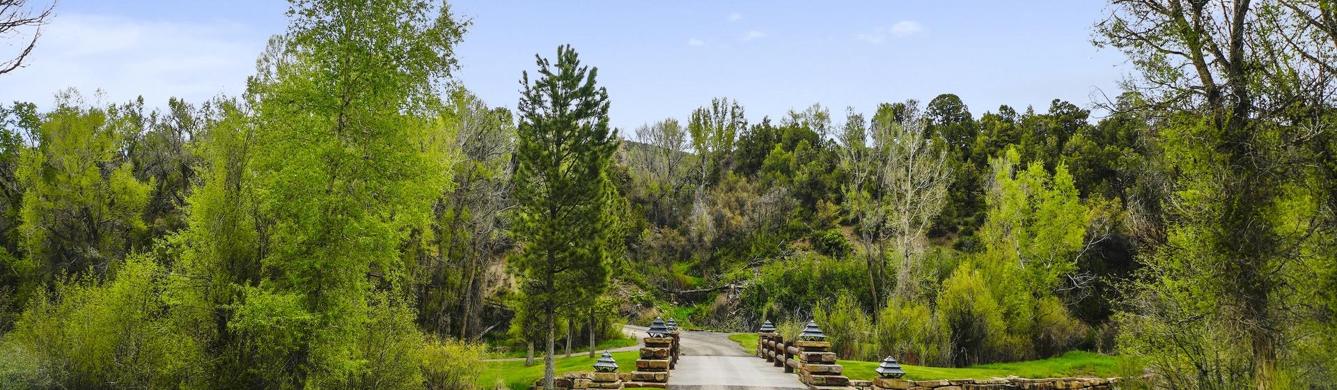 13.2-Telluride-Sleeping-Indian-Ranch-driveway-bridge-web.JPG