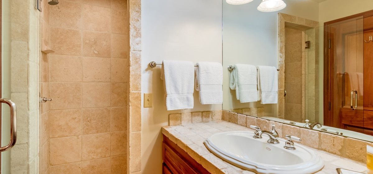 12-Telluride-PacificStreetTownhouse2-GuestBath2LR-V12.JPG