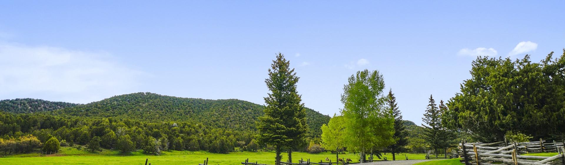 13.4-Telluride-Sleeping-Indian-Ranch-driveway-3-web.JPG