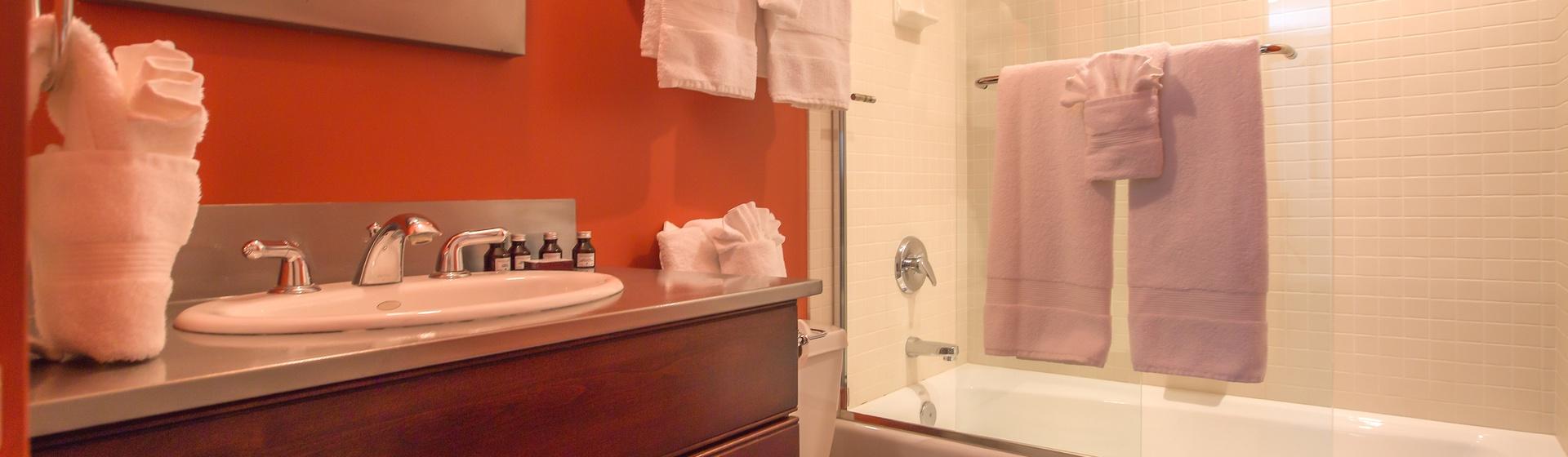 11-Telluride-Ajax-Guest-Bathroom-1-Web-Web.jpg