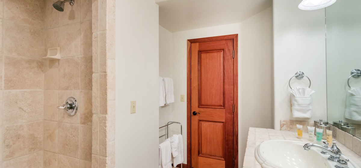 14-Telluride-PacificStreetTownhouse2-GuestBath3LR-V12.JPG