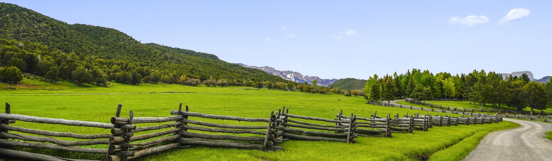 13.3-Telluride-Sleeping-Indian-Ranch-driveway-2-web.JPG