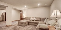 Basement living room with lots of seating