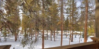 Beautiful view of spectacular forests off of porch