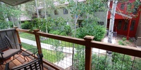 View of beautiful vegetation off of porch