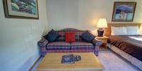 Living room with a sofa sleeper
