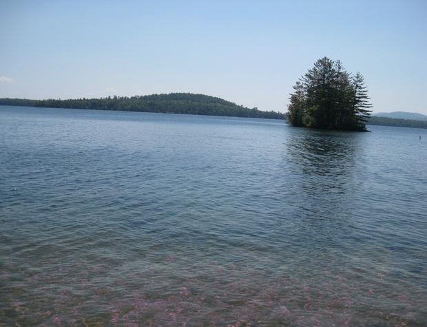 View of Horse Island.JPG