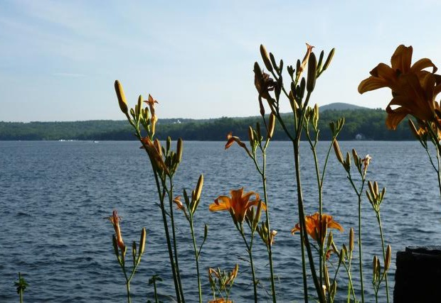 exterior water view with tiger lillys.jpg