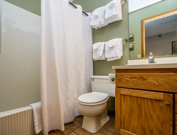There is a main level bathroom as well as a bathroom off of the loft bedroom.