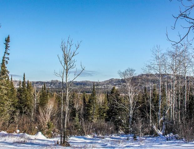 Poplar Valley-4-Winter4.jpg