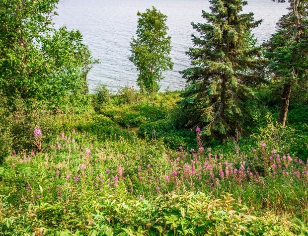 Deer Creek-1-Exterior5.jpg