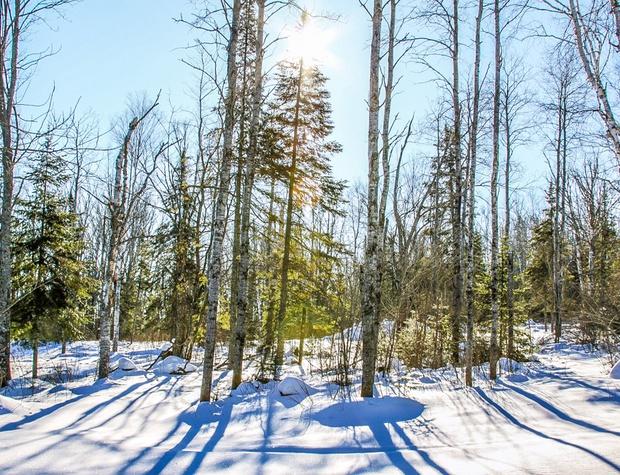 Poplar Valley-4-Winter5.jpg