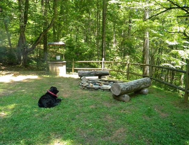 whispering-woods-cabin (4).jpg