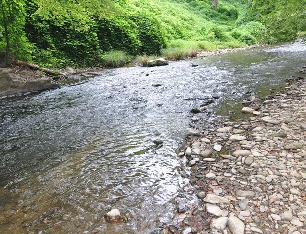 creekside-hideaway (3).jpg