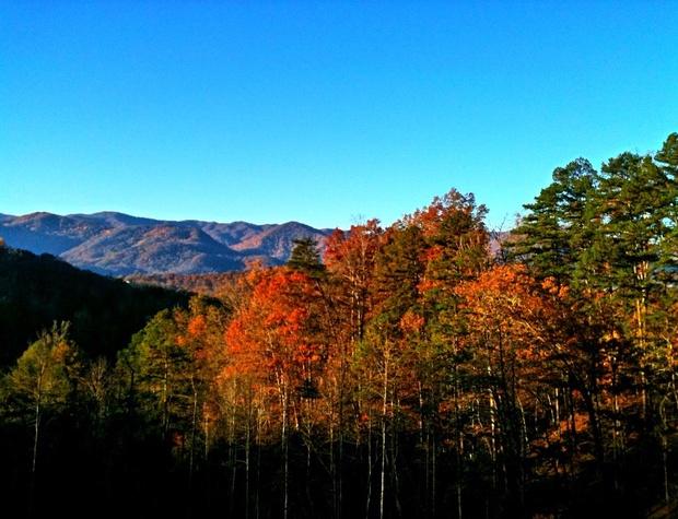 wilderness-hideawayCrisp Air, Fall Colors, Beautiful Year Round (22).jpg