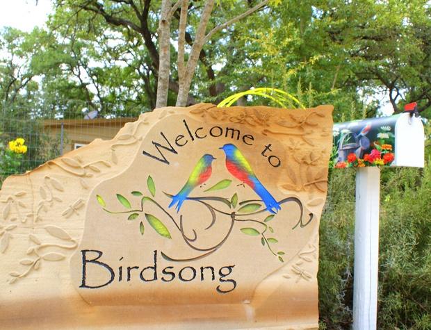 birdsong-8-13-15-110e_20469947888_o.jpg