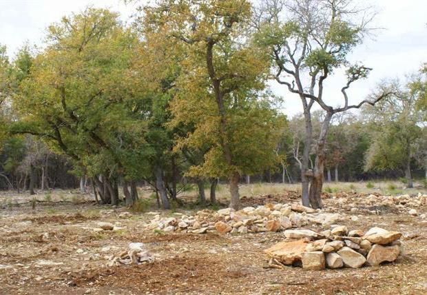 almost-ranch-oaks05e_20086202454_o.jpg