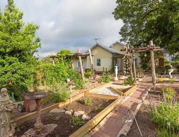 Walking paths through the garden