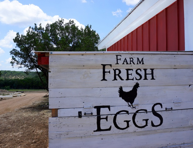 Gather your own farm fresh eggs during your stay!