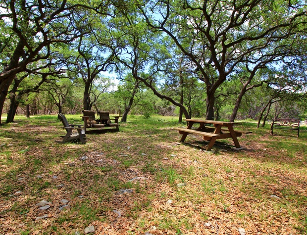 Enjoy nature and have a picnic under the trees