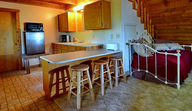 Kitchenette area of cabin with refrigerator and microwave