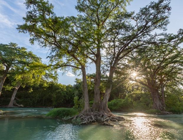 Beautiful mature trees border the river providing ample shade.