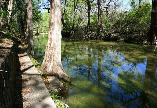 The iconic Cypress Creek!