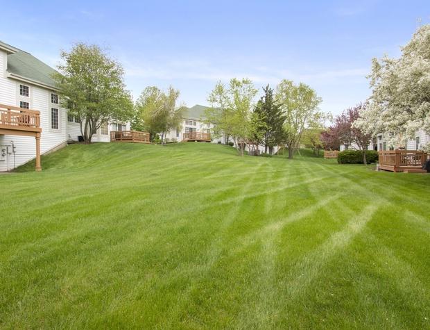 View from Backyard.jpg