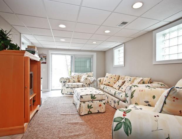 Lower Level Living Room.jpg