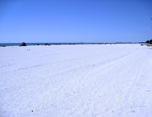 Anna Maria Island Beach Sands 101