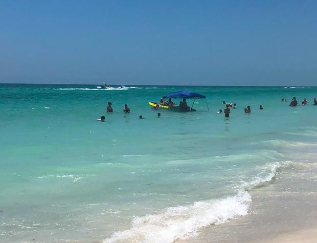 Anna Maria Island Beach Palms 7A